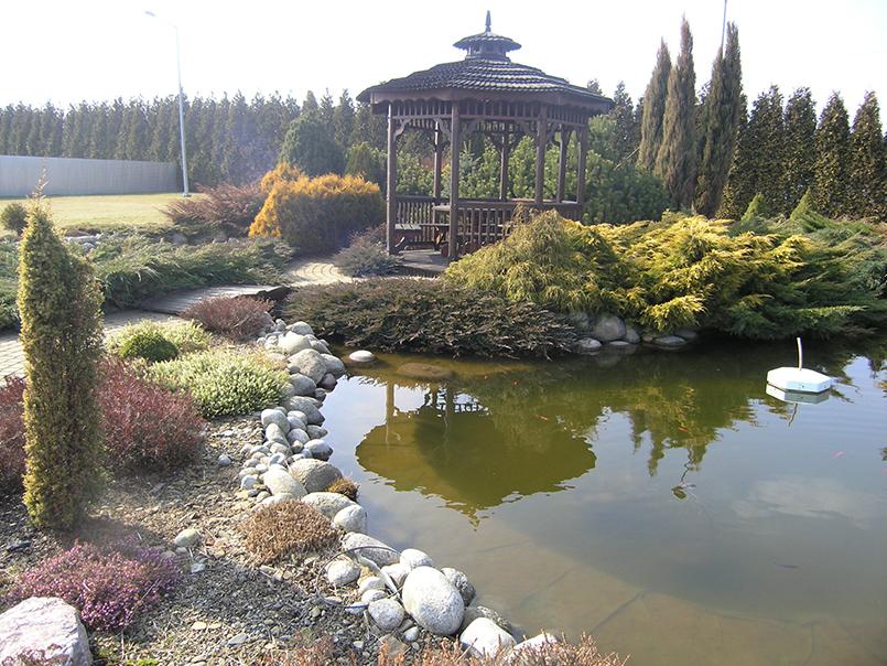 Ландшафтный дизайн сакура